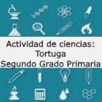 Actividad de ciencias: Tortuga – Segundo grado primaria
