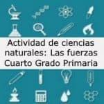 Actividad de ciencias naturales: Las fuerzas – Cuarto grado primaria