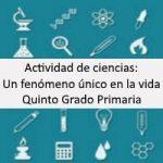 Actividad de Ciencias: Un Fenómeno Único en la Vida – Quinto grado primaria